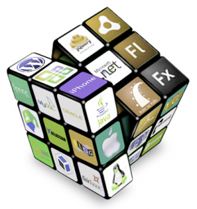 Rich Internet Application Services | Panacea Infotech