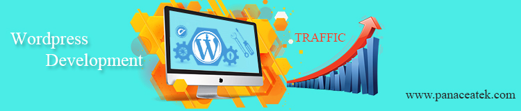 Get More Traffic by an Attractive WordPress Website Development