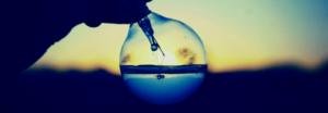 perspective-insight panacea infotech