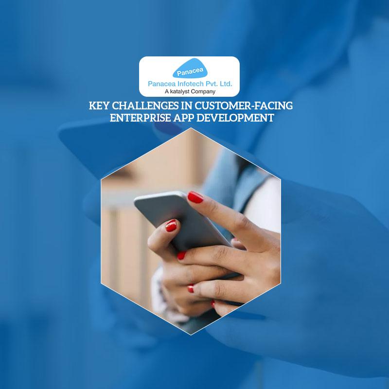 Key Challenges in Customer-Facing Enterprise App Development