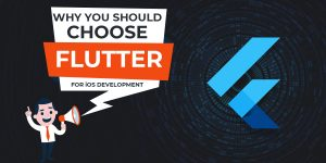 Why You Should Choose Flutter for iOS Development
