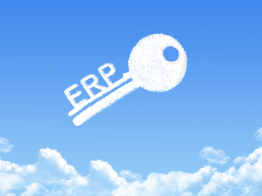 ERP Security